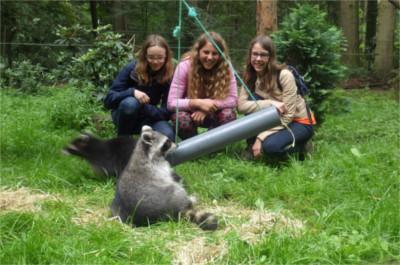 zomerkamp-dierverzorging